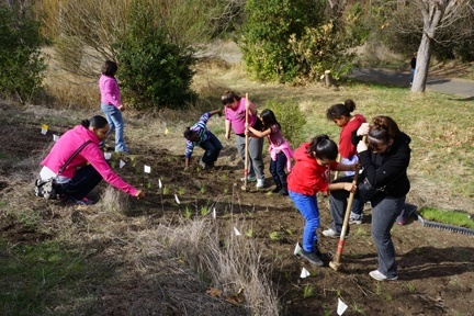 WE HP- kids planting