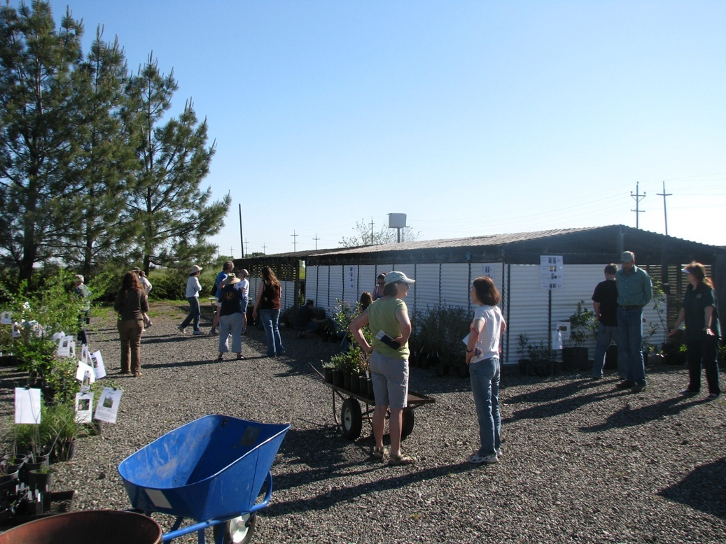 Solano RCD Spring 2012 Plant Sale