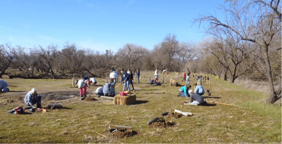 Volunteer work day on Sweeney Creek near Allendale